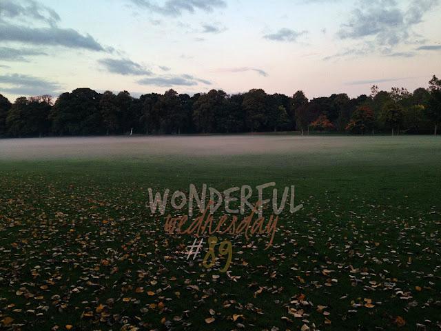 Wonderful Wednesday #89