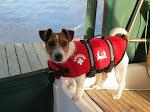 New crew member