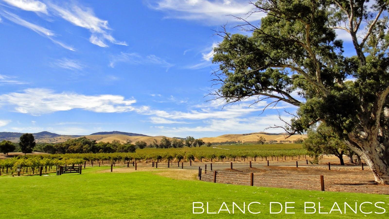 Barossa Valley - www.blancdeblancs.fi