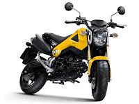 Gambar Motor 2014 Honda MSX125 - 1