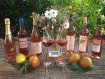 Badischer Winzerkeller Breisach 5 Rosé und 1 Winzersekt Pinot Rosé
