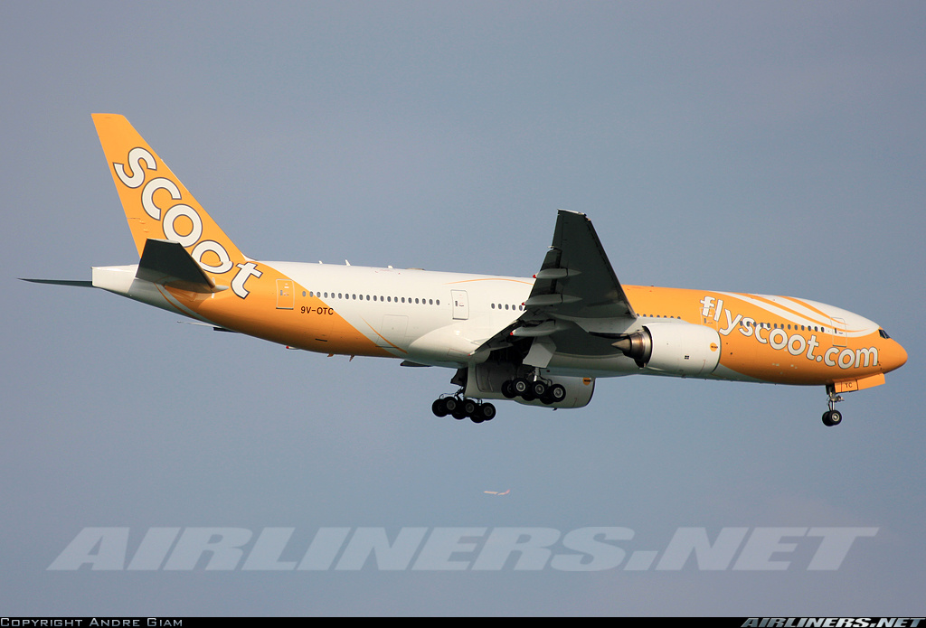 scoot airlines - photo #25