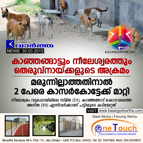 Kanhangad, Nileshwaram, Street dog, Dog bite, Kerala, General-hospital, Injured, Kasaragod.