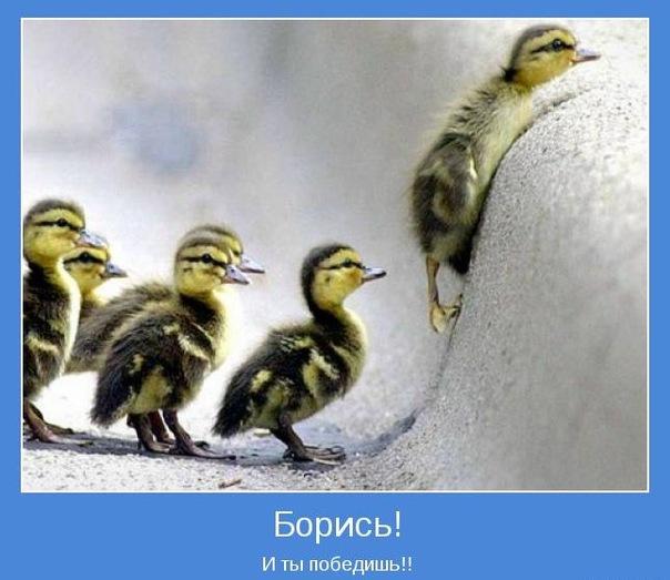 Невозможное возможно, Мышление успешных людей, Психология успеха