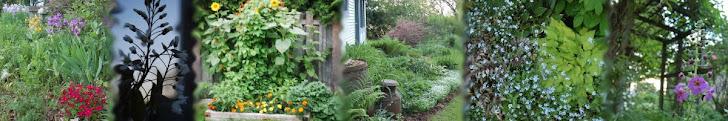 nuestros bonitos jardines