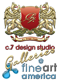 C.7 Design Galleries