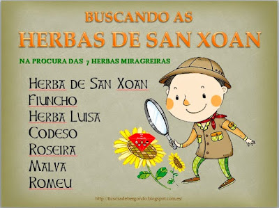 http://www.rios-galegos.com/sanxoan.htm#As sete herbas base.