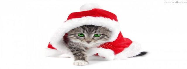 Cat Christmas couverture facebook