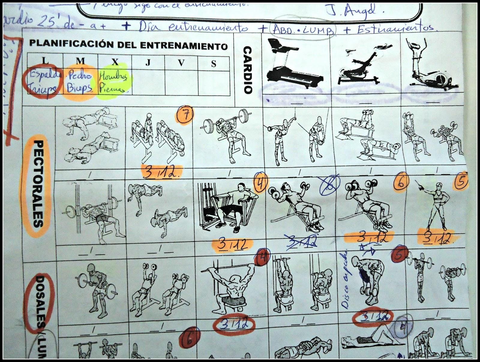 tabla de ejercicios de calentamiento para el gimnasio haz