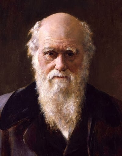 charles darwins contribution to 19th century england Charles darwin in the 19th century and inequality in england and - charles darwin charles darwin was a 19th century scientist.