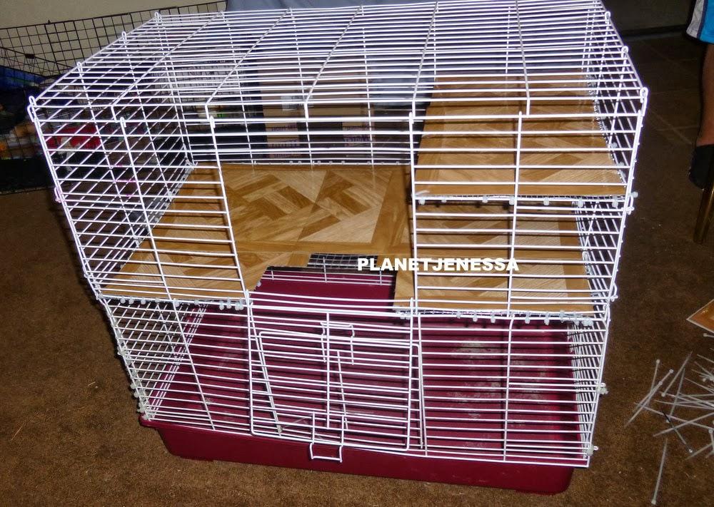free cages for rats images. Black Bedroom Furniture Sets. Home Design Ideas