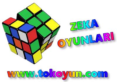 TokOyun.com Zeka Oyunları