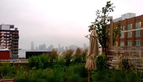 Memelihara Taman di Atas Dak Beton