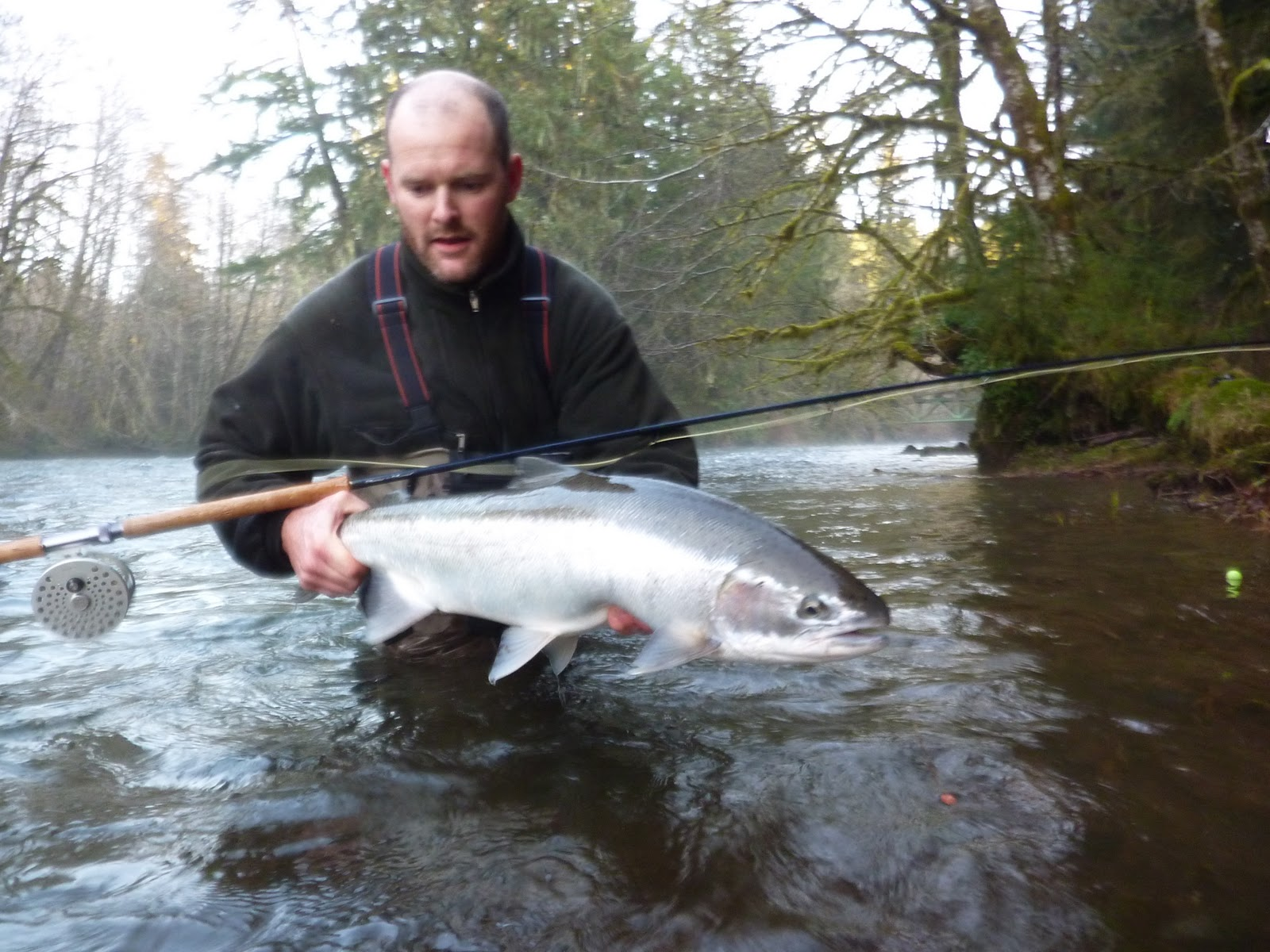 Brian marz 39 s fly fishing oregon blog don 39 t let the high for Oregon steelhead fishing