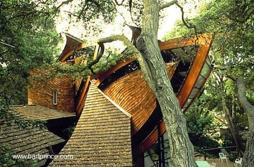 Casa orgánica diseñada por el arquitecto Bart Prince