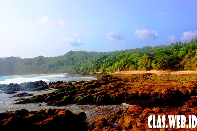 Wisata Pantai eksotis pantai wediombo  di gunungkidul Yogyakarta selain pantai indrayanti