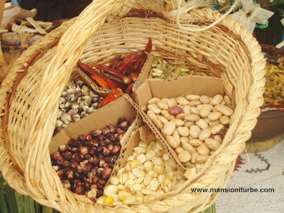 Traditional Ingredients in the Mexican Cuisine
