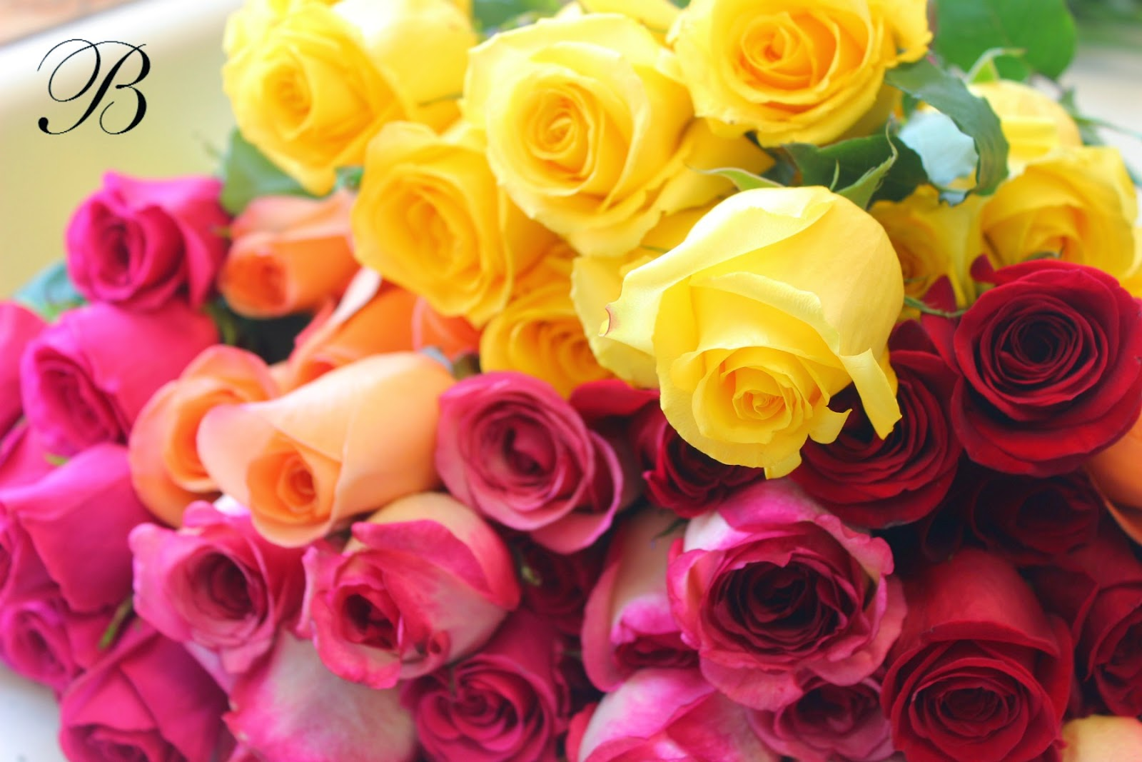 Bank Of Flowers Roses Are Redd Lavender And Yellow And Pink And