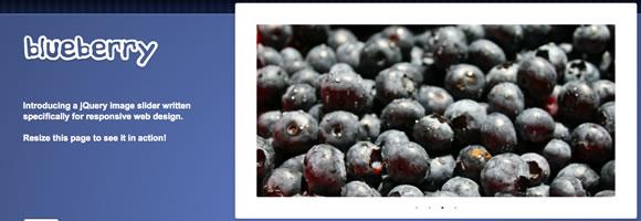 http://2.bp.blogspot.com/-JODj2liAihk/UQmYpMFqF7I/AAAAAAAAPoo/btdammQbfXU/s1600/Blueberry.jpg