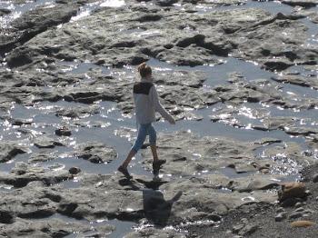 Exploring the tidepools