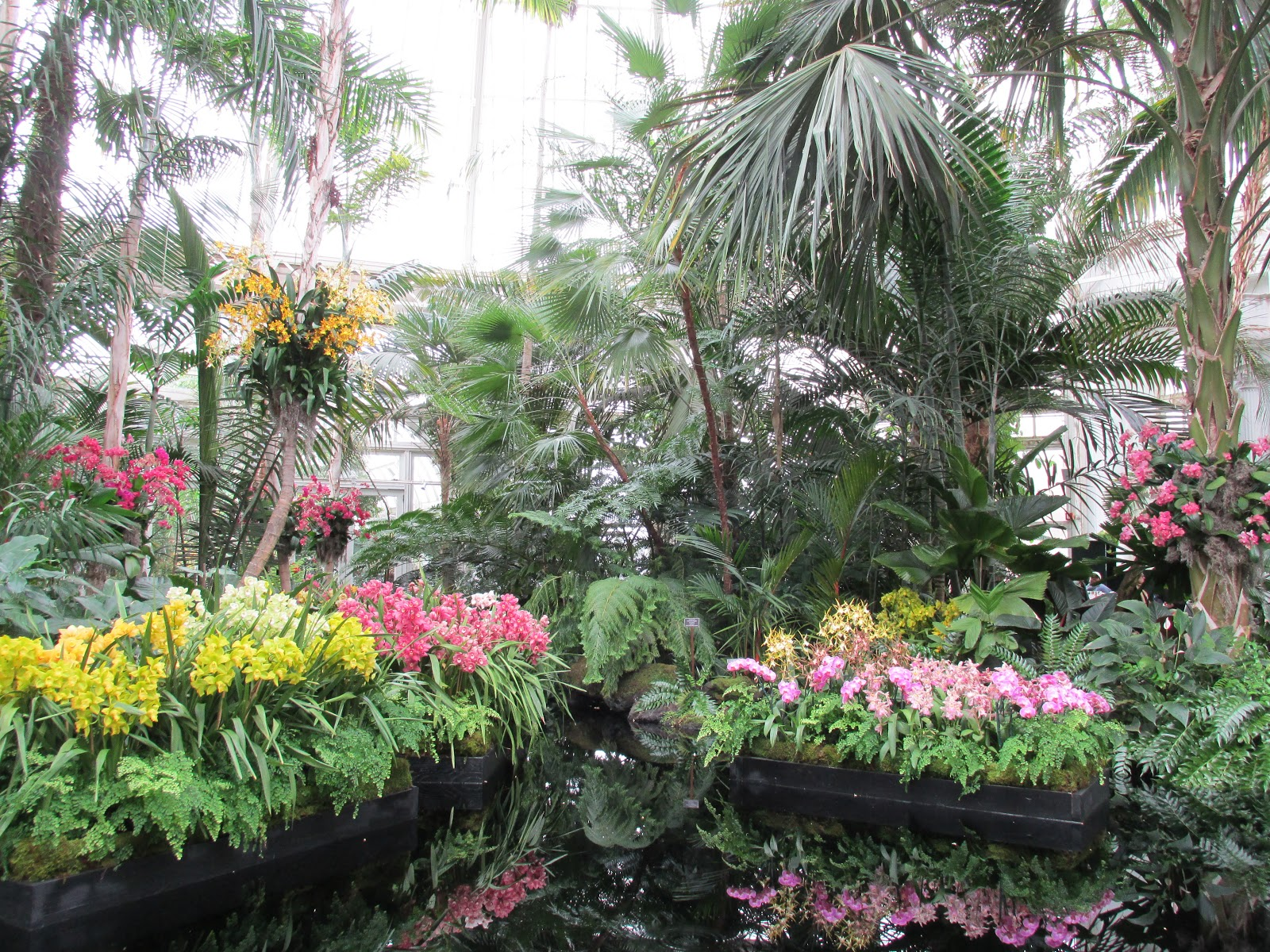 Garden Glamour By Duchess Designs Exploration Observations Of The Dazzling New York Botanical