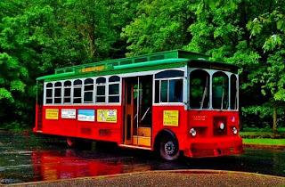 Delaware Water Gap National Recreation Area (Best Honeymoon Destinations In USA) 8