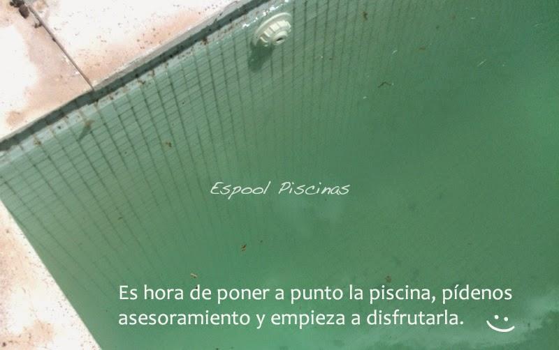 Dr espool blog de espool piscinas gel limpiador y for Limpiador fondo piscina
