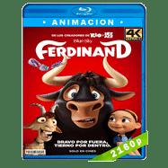 Olé, el viaje de Ferdinand (2017) 4K UHD Audio Dual Latino-Ingles