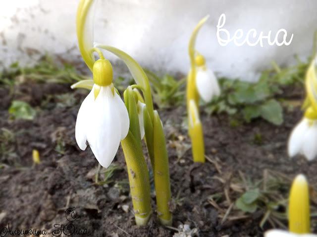 Весна - весна)