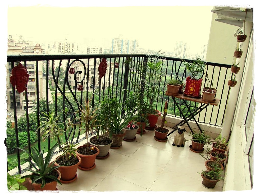 Design decor disha an indian design decor blog fan for How to decorate terrace with plants