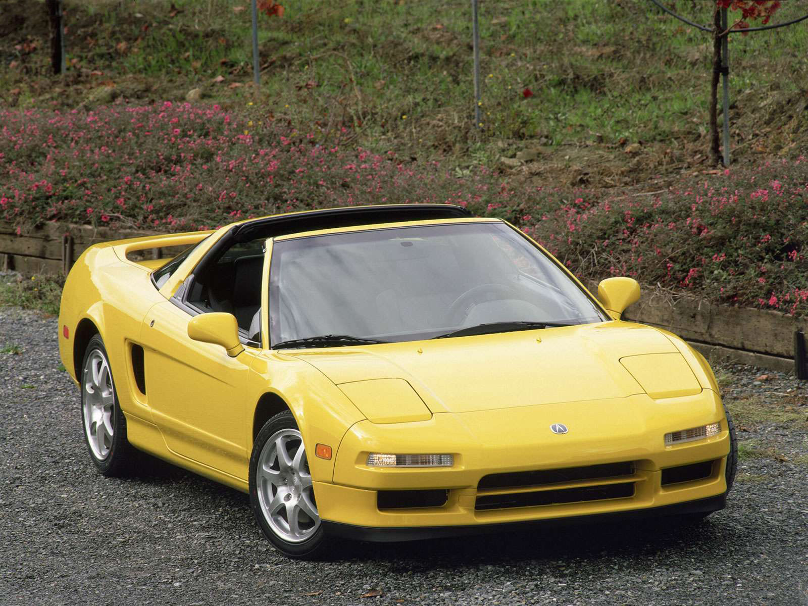 Acura Exotic Car >> 2001 ACURA NSX-T car photos, pictures, wallpapers