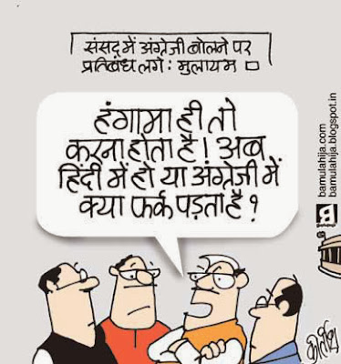 parliament, cartoons on politics, indian political cartoon, Hindi, political humor