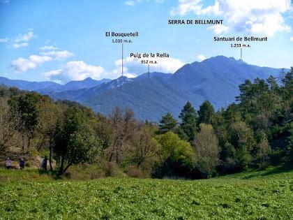 Panoràmica de la Serra de Bellmunt des dels camps de la Casa Nova de la Coma