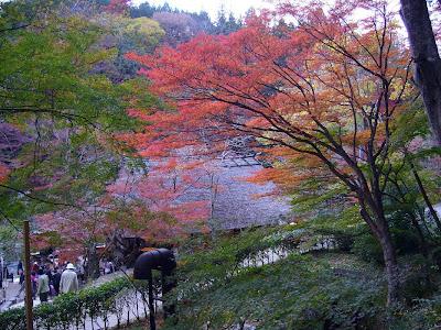 愛知県・香嵐渓の紅葉