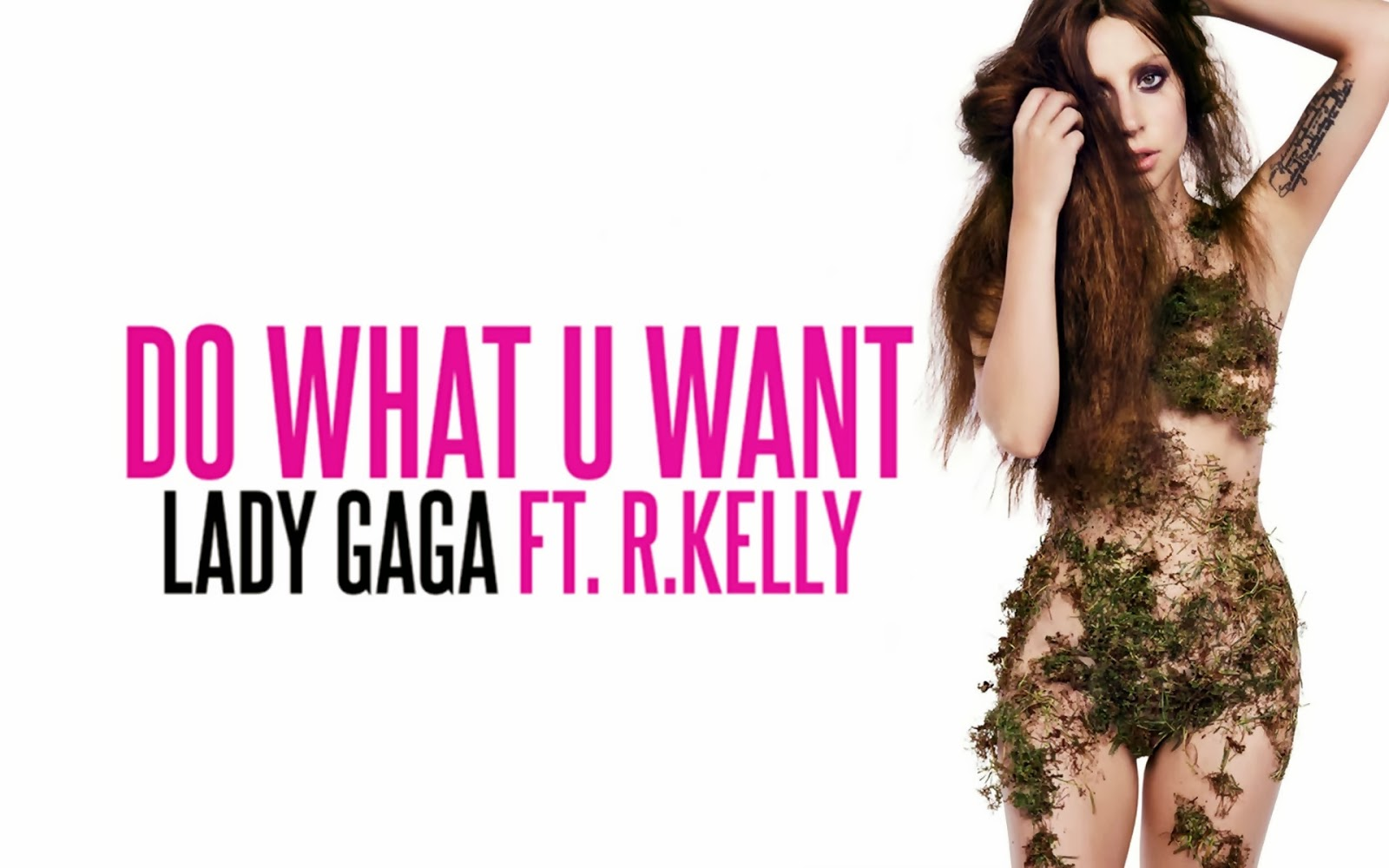 http://2.bp.blogspot.com/-JPuc3LWFjuU/UmTw-q0RV4I/AAAAAAAAtrU/7_xlt9swaXg/s1600/Lady-Gaga-Announces-Do-What-U-Want.jpg