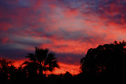 The Creative Exchange: A Glorious Sunset. The setting sun bidding Arizona . (sunset)