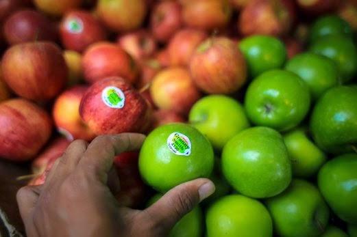 gala & granny smith apple