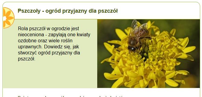 http://www.zielonyogrodek.pl/pszczoly-ogrod-przyjazny-dla-pszczol