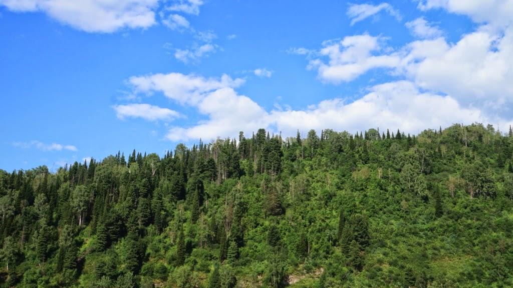 Телеуты изображали горы человекоподобными существами