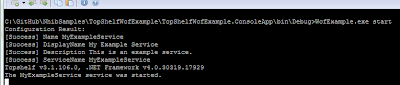 Example of the WcfExample.exe start command.
