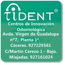 Tident
