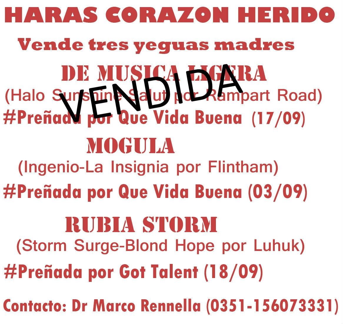 HS CORAZON HERIDO