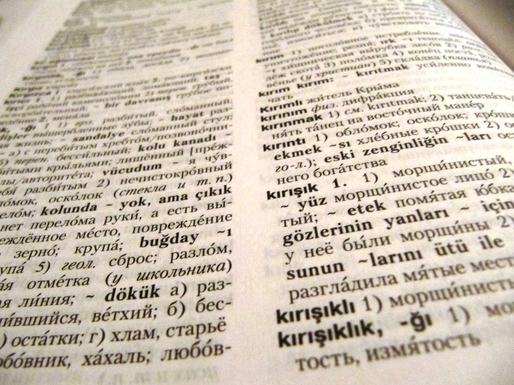Смотреть expolled с русским переводом 22 фотография
