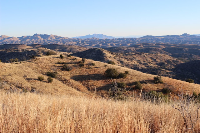 Hunting%2Bfor%2BCoues%2BWhitetail%2Bin%2BMexico%2Bwith%2Bguides%2BJay%2BScott%2Band%2BDarr%2BColburn%2B17.JPG