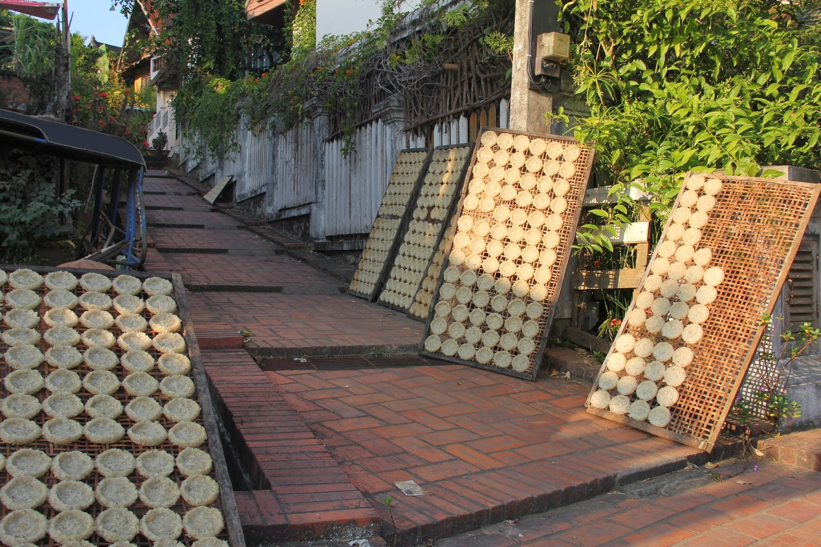Sticky rice cakes drying on wicker mats in the sun in Luang Prabang.  A traditional Lao food.