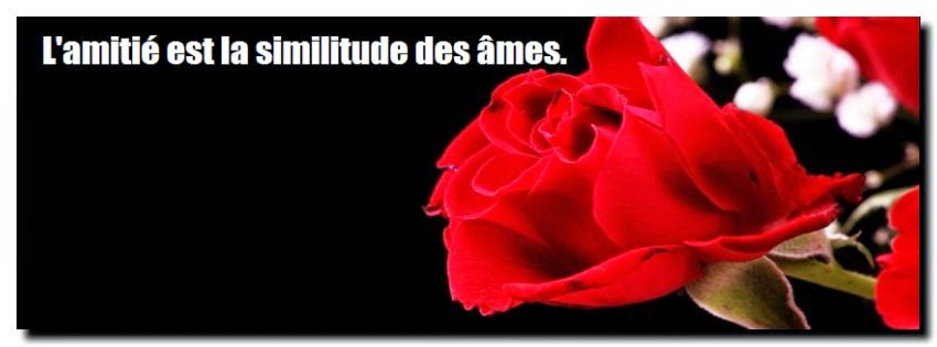 Citation d'amitié en amour