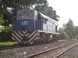 U13 MF624
