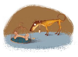 pitt bull lesoványodva éhezik a nagy csontos kalitka előtt