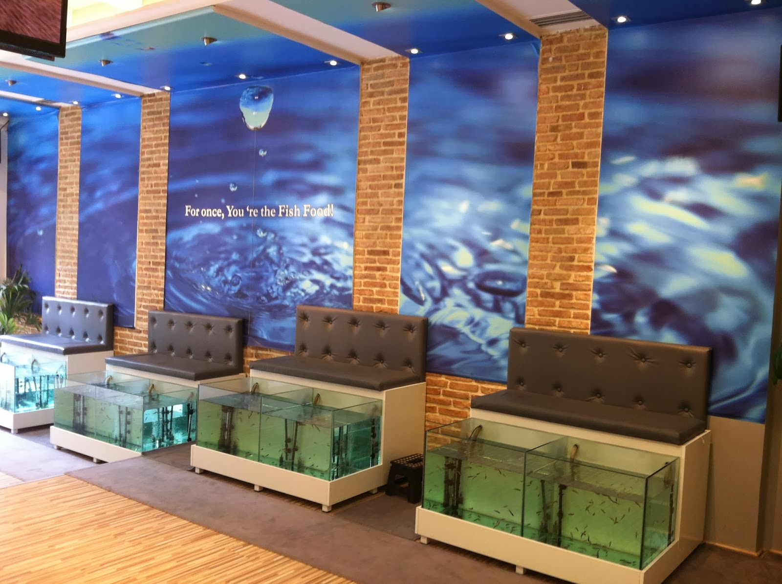 2 10 2013 for Fish spa near me