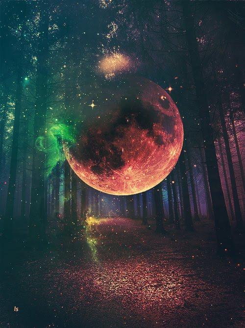 Porque una persona no puede enamorarse dos veces a la vez, y yo ya estoy enamorada de la Luna.
